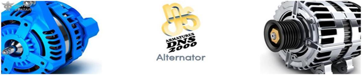4.3 Armature DNS Alternators