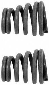 Exhaust Spring (Pack of 2) by WALKER