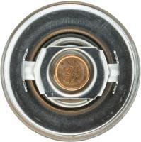 195f Original Equipment Thermostat 33009