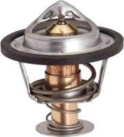 195f Original Equipment Thermostat 33329