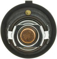 195f Original Equipment Thermostat 33849