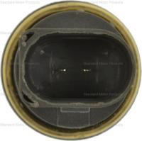 Coolant Temperature Sensor TS608