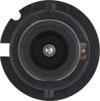 Dual Beam Headlight D2SC1