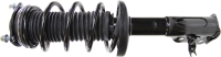 Front Complete Strut Assembly by MONROE/EXPERT SERIES