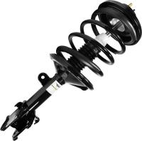 Front Complete Strut Assembly