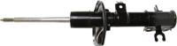 Front Monroe Matic Plus Strut 802295