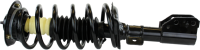 Front Quick Strut Assembly 172209