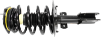 Front Quick Strut Assembly 172231