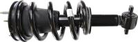 Front Quick Strut Assembly 239112