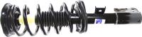 Front Quick Strut Assembly 272526