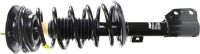 Front Quick Strut Assembly 472218