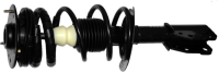 Front Quick Strut Assembly 172174