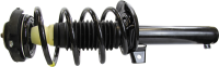 Front Quick Strut Assembly 172311