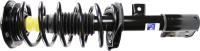 Front Quick Strut Assembly 172526