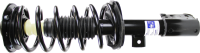 Front Quick Strut Assembly 172527