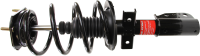 Front Quick Strut Assembly 172949
