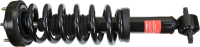 Front Quick Strut Assembly 173032R