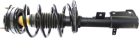 Front Quick Strut Assembly 271130