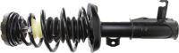 Front Quick Strut Assembly 272184