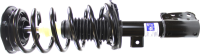 Front Quick Strut Assembly 272527