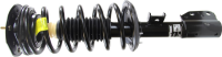 Front Quick Strut Assembly 472217