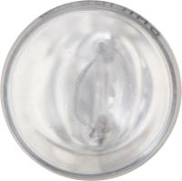 Instrument Light (Pack of 10) 12961CP