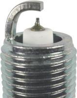 Iridium And Platinum Plug 5599