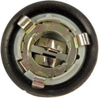 License Plate Light Socket 85820