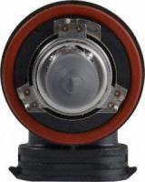 Low Beam Headlight