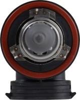 Low Beam Headlight H11PRB1