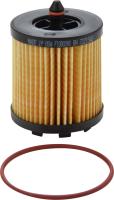 Oil Filter 72215WS