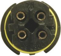 Oxygen Sensor 25569