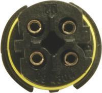 Oxygen Sensor 25612