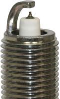 Platinum Plug 5017