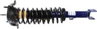 Rear Complete Strut Assembly 281311