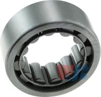 Rear Wheel Bearing WBR1561TV