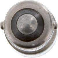 Seat Belt Warning Light (Pack of 10) 1816CP