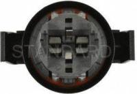 Tail Light Socket S2551