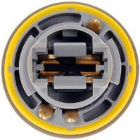 Tail Light Socket 923-034
