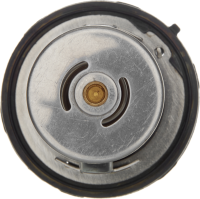 Thermostat 34198S