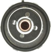 Thermostat 456-187