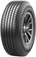 Tire 10103